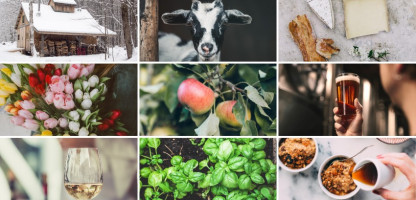 Experience Vermont Farms from Home